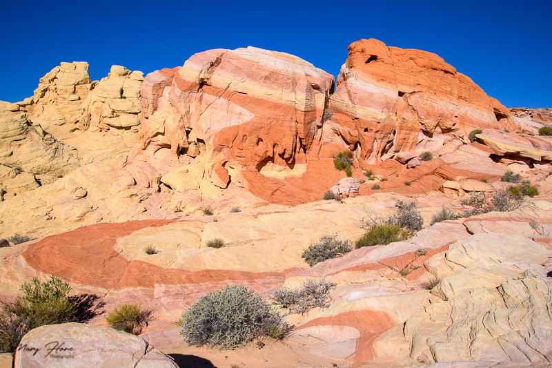 striped rock valley of fire