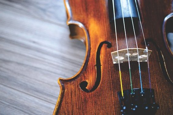 violin-2560312__340