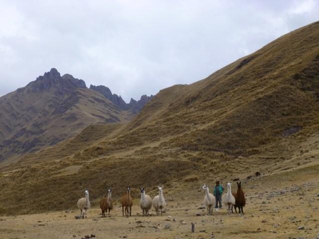 Incredible scenery, local communities & llamas