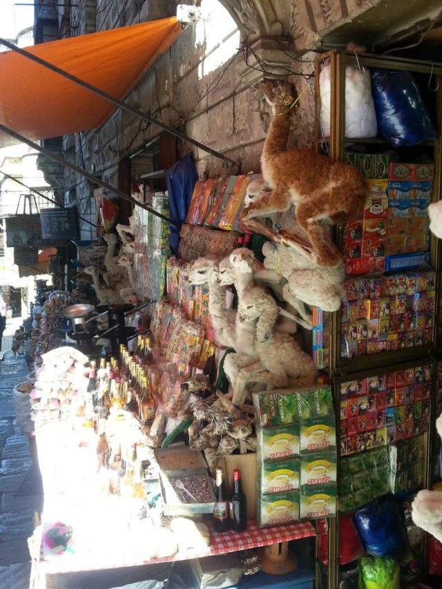 Llama Foetuses at the Witches Market in La Paz