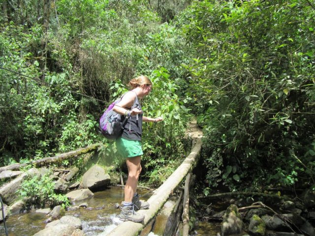 Me crossing a bridge Hiking in Cocora Valley