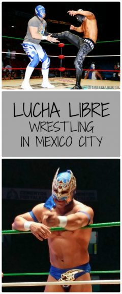 Lucha Libre in Mexcio City 1