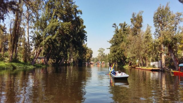 Early morning is the best time to enjoy the peaceful waters of Xochimilco