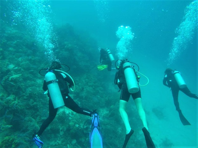 Some of our group diving in Honduras with Utila Dive Center (that's me on the right!)