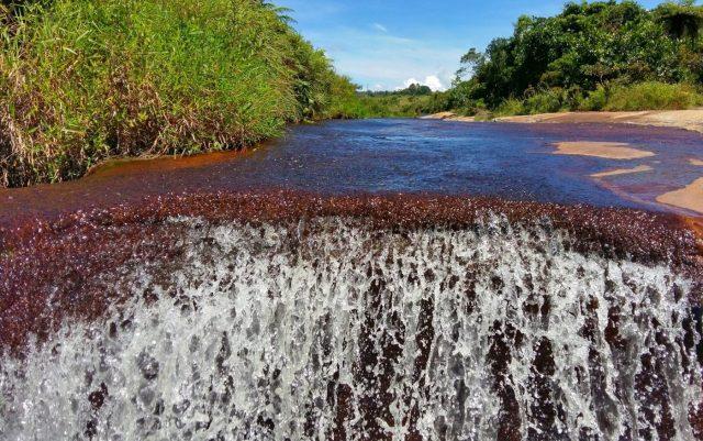 One of the deep plunge pools at Las Gachas Colombia - La Quebrada las Gachas, like the Caño Cristales of Santander
