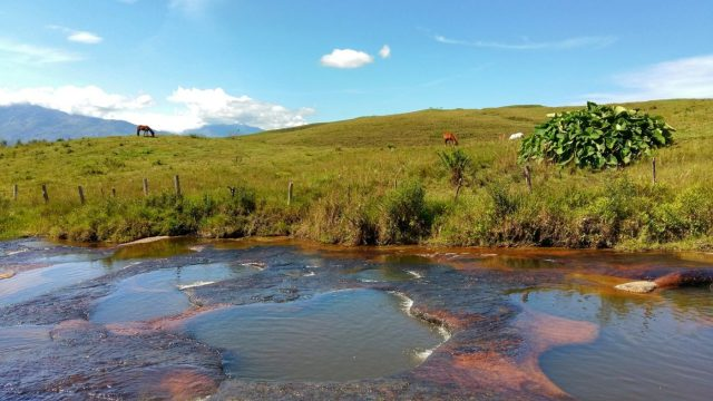Blue Skies at the Red River Las Gachas Colombia - La Quebrada las Gachas, like the Caño Cristales of Santander