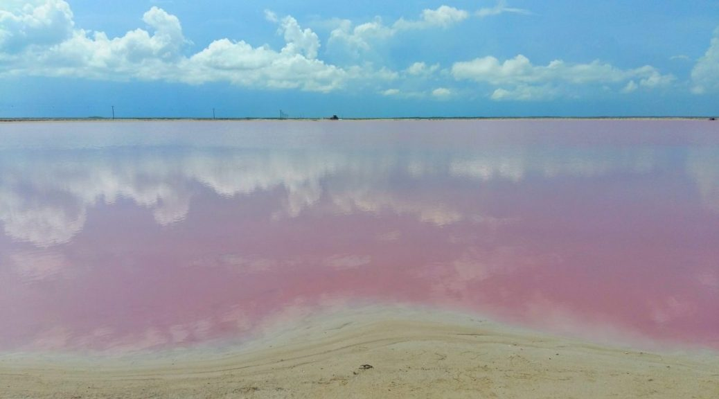Gorgeous pink lakes and reflections at las Coloradas - near Rio Legartos Mexico