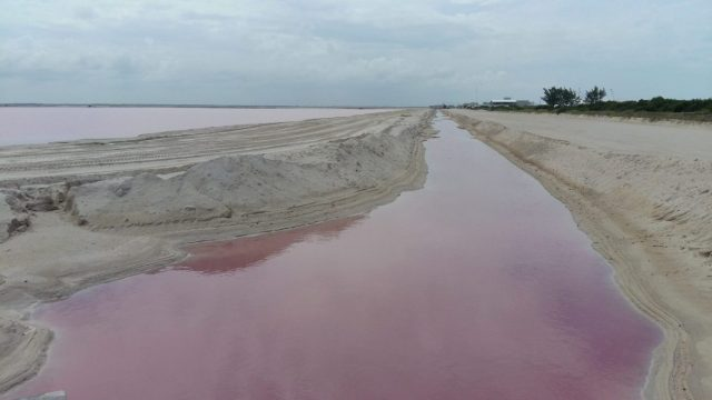 It's not as romantic as I expected but its still pretty! The pink lakes at las Coloradas - near Rio Legartos Mexico