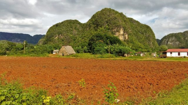 A tobacco field and house in Vinales Cuba - 2 weeks in Cuba Itinerary