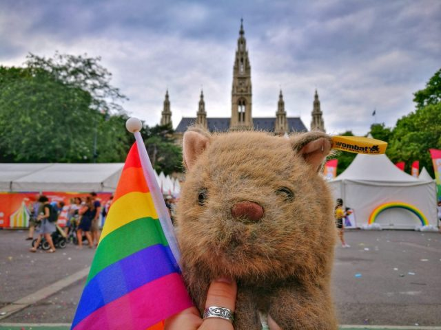 Where's Wagner Wombat? At Pride by the Town Hall - Places to Visit in Vienna in 2 Days