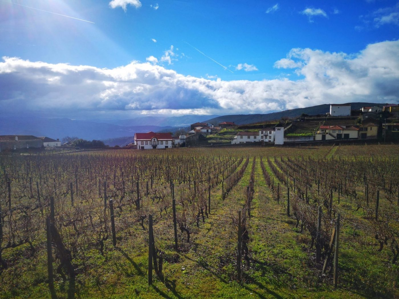 A Douro Valley Wine Tour & River Cruise from Porto