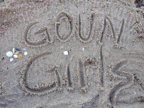 goun girls1 copy