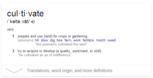 Cultivate definition