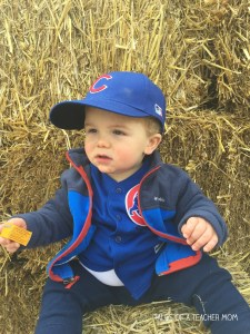 cubs-costume