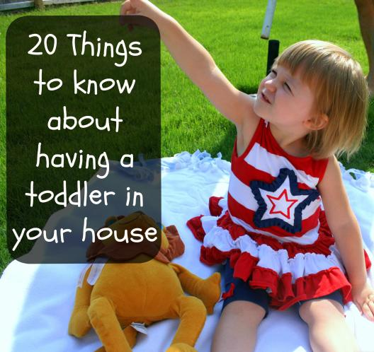 20 things to know about having a toddler in your house