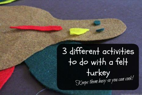 Turkey felt activity