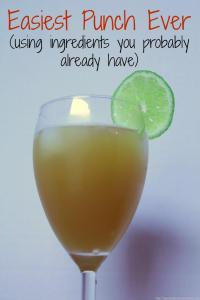 ginger ale punch recipe (1)