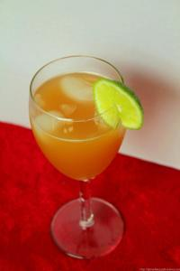 ginger ale punch recipe (4)