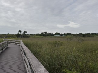 The coastal prairie
