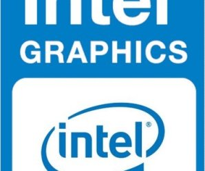 Intel Graphics Driver for Windows 10 v26.20.100.8141 [x64] Free Download!
