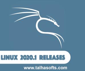 Kali Linux 2020.1b x64 ISO Free Download !