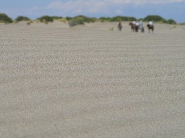 hobusekaravan rannas