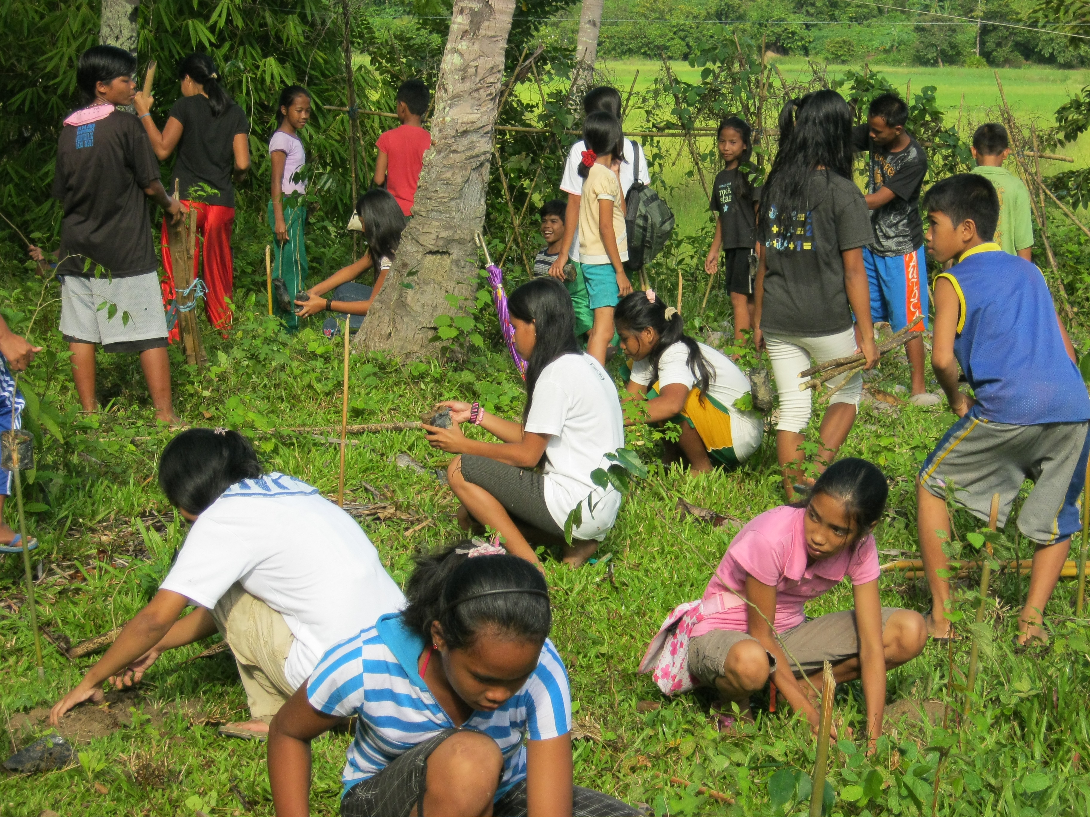 Sibaltan Youth Leads Tree Planting Activity