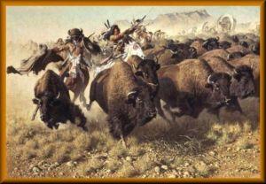 búfalos tótem