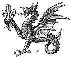 heraldic dragon wyvern