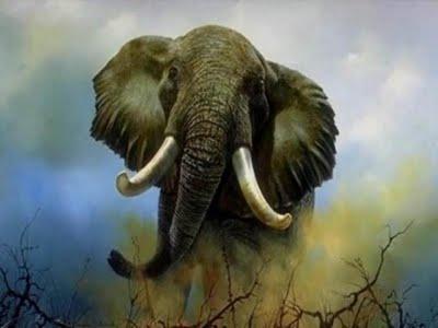 Elefante Tótem Totemanimal