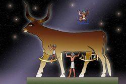 Resultado de imagen de significado de la vaca en el mundo celta