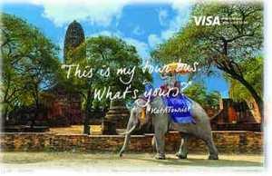 maltrato elefantes