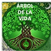 árbol de la vida símbolo celta