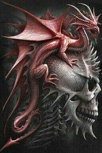 dragón y calavera