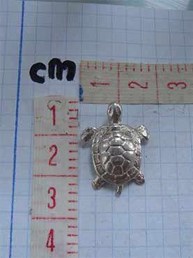 tortuga de plata medida en cms