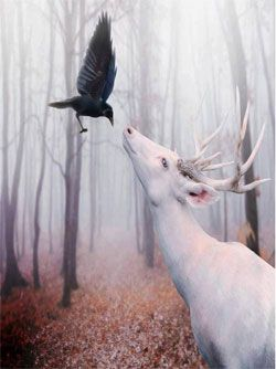 magia de los bosques celtas