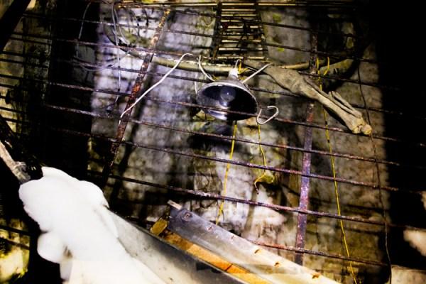 Alive Underground - Urbex Photography of Abandoned Caves