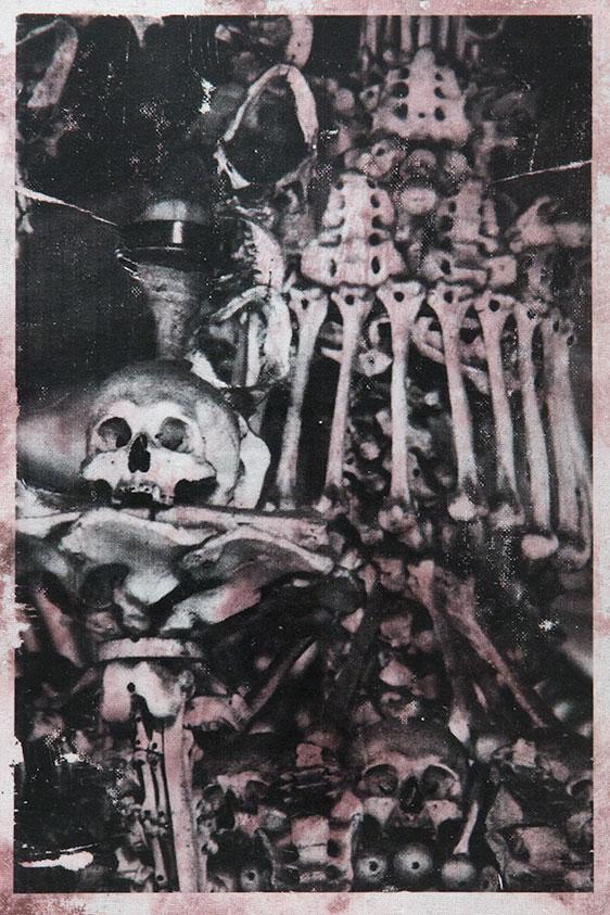Detail of ornate bone arrangements at the Sedlec Ossuary.