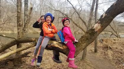 Monday, March 16, 2020 – Climbing a tree. Ellicott City, MD. Jennifer Levin Devine