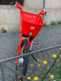 Tuesday, May 5, 2020 – Rome's shared bicycles were in disuse during the 8-week lockdown. This one was at risk of being overgrown by dandelions. Rome, Italy. Lauren Phillips