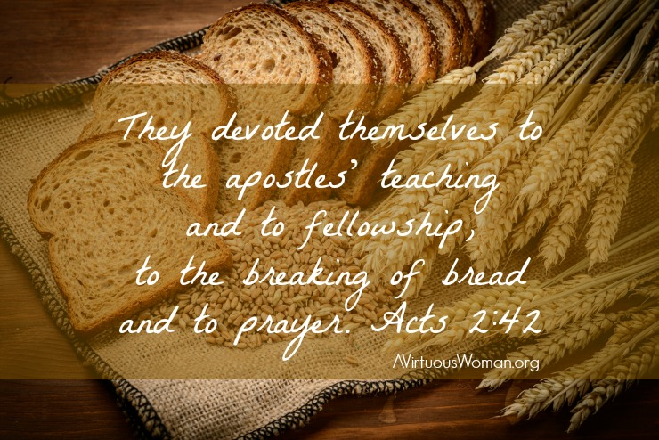 Breaking Bread Bible Teaching Segments from 10/27 - 11/10