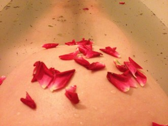 Fresh picked rose petals on a blooming belly!