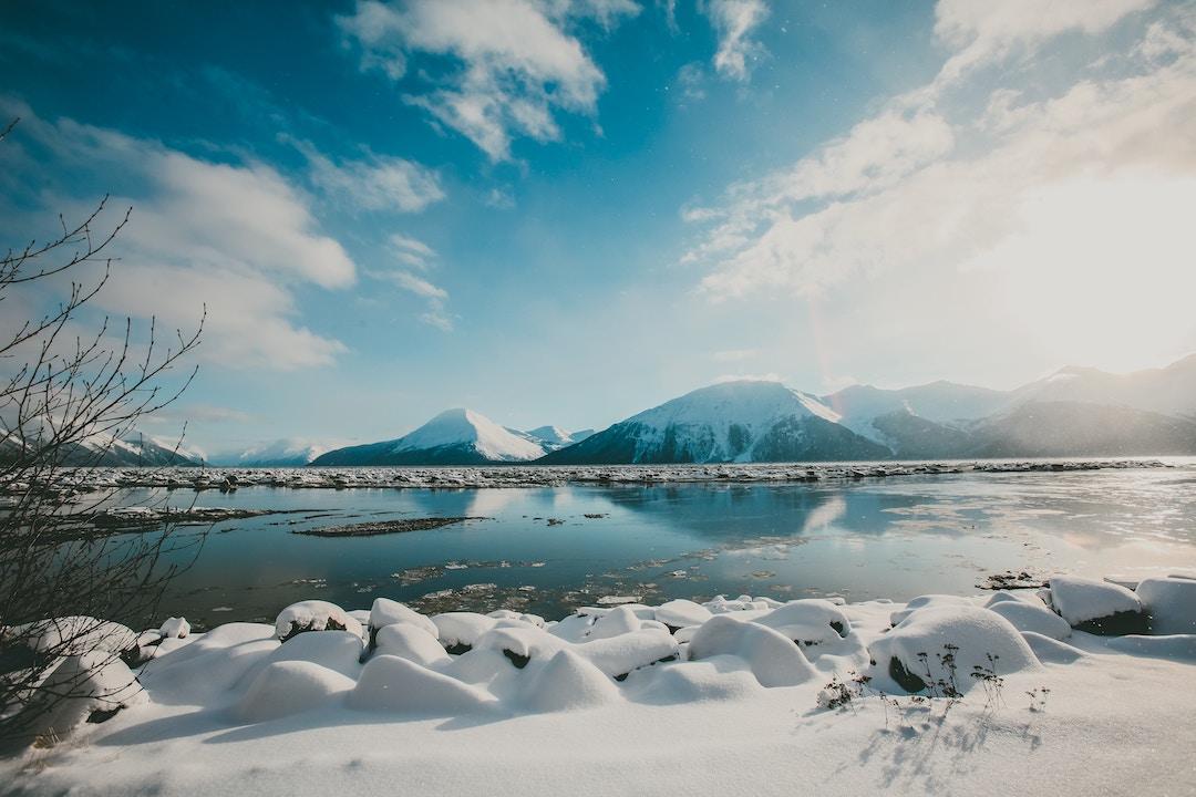 Best Boba places in Alaska