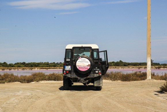 pink salt lakes, Flamingos and pink salt lakes, nature at its blush best