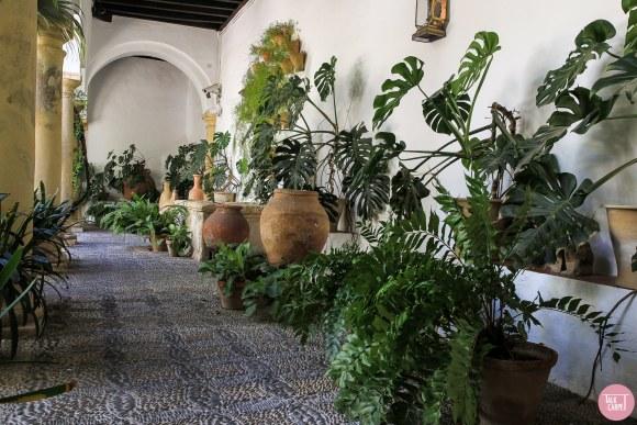 minimal organic carpet, organic pattern with a minimal and modern approach