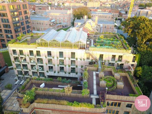 , Become an urban farmer on this rooftop in Antwerp