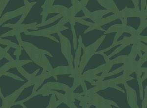 shadow of sage  green