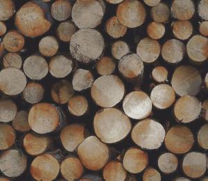 woodpile  black