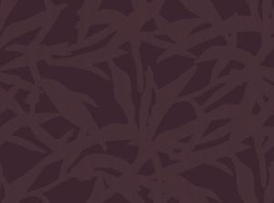 shadow of sage purple