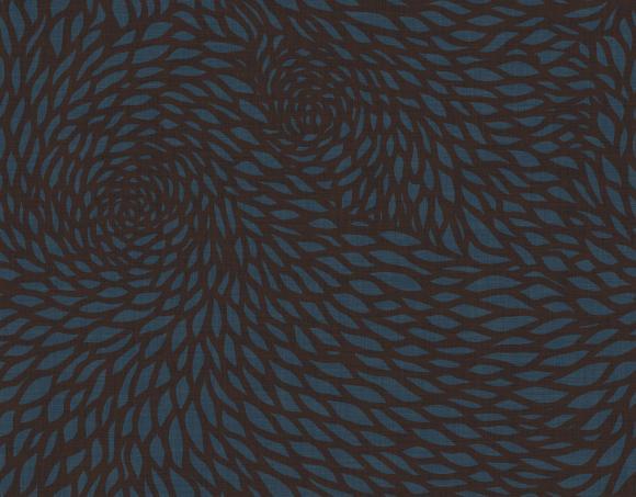 chrysanthemum  blue